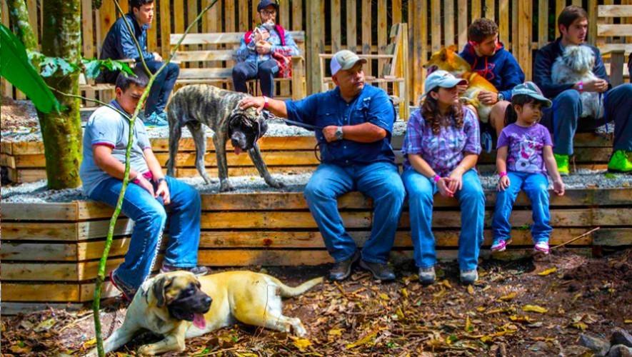Green-Rush4-Dog Park Guatemala