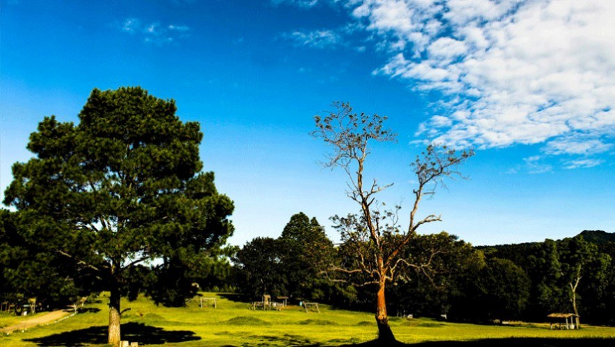 Parque-Ecologico-Florencia Guatemala ideal para perros