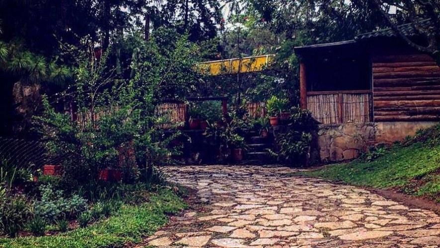 Parque-Ecologico-Jacarandas-de-Cayala-perros