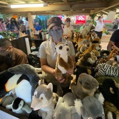 Zoo Adventure, una actividad en apoyo al Zoológico la Aurora en la ciudad-