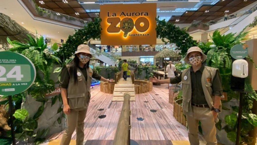 Zoo Adventure, una actividad en apoyo al Zoológico la Aurora en la ciudad